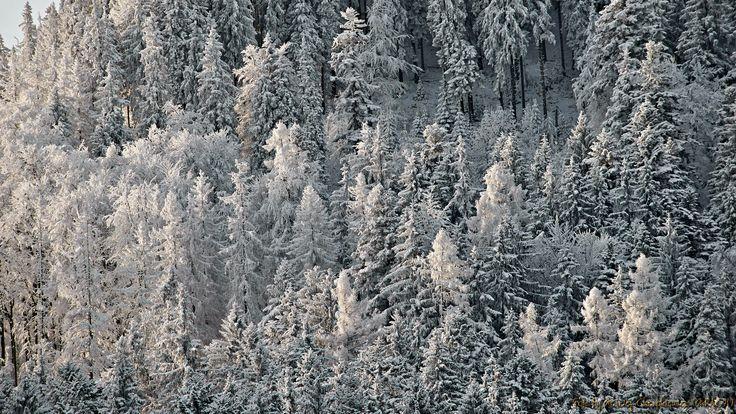 Tatry – Zimowy Regiel