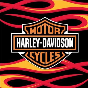 Shop for the latest Harley Home Fashions including Harley Davidson Flames Area Rugs at the domestic Bin