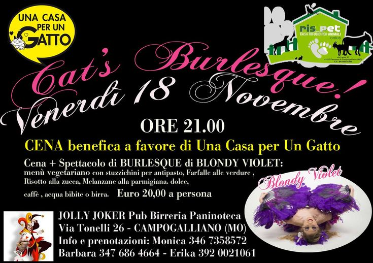 2016_11_18 - BLONDY VIOLET for PETS Fundraising Dinner @ Jolly Joker (Campogalliano)