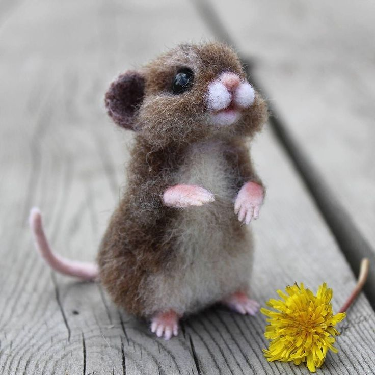 Sweet little felted mouse...