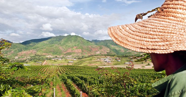 Where to sip and sample Myanmar wines.