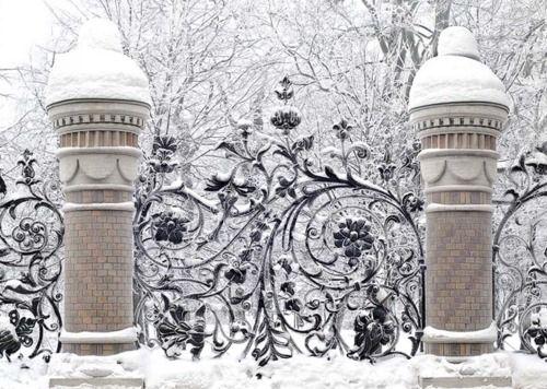 Stunning winter gateGreen Home, Winter Scene, Winter Wonderland, Gardens Gates, Wrought Iron, Wroughtiron, Fence Design, Iron Gates
