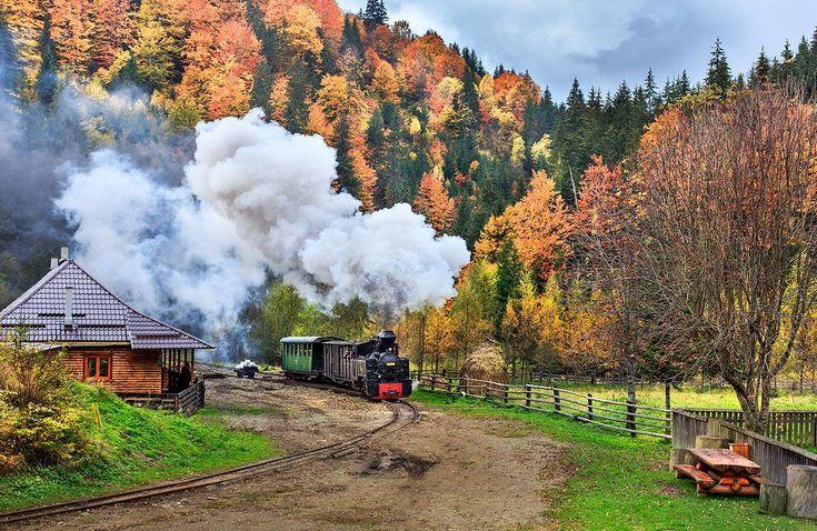 Punctul de pornire pentru Mocăniţa este oraşul Vişeu de Sus. Acesta este un tren cu aburi, îngust, ce funcţionează pe calea ferată ce merge de-a lungul râului Vaser şi este una dintre ultimele şine de căi ferate pentru locomotivele cu aburi care încă mai este activă, din Europa, fiind şi singura din România care încă mai este folosită în scop forestier.