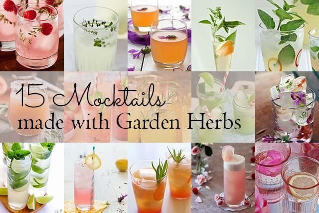 Alcohol-free drinks made with fresh herbs, edible flowers, wild foraged plants and berries, and other delightful natural ingredients.