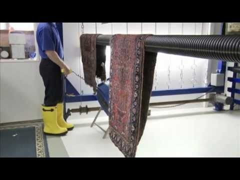 Click To Watch Our Pet Odor Removal Process Video Area Rug Cleaning Company