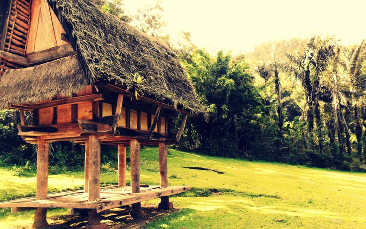 Old alang in Toraja