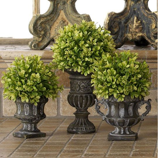 Old-World-Tuscan Bathroom Idea: Potted Topiary                                                                                                                                                      More