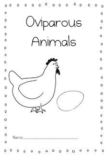 Oviparous Animal Lesson Plans with FREE file