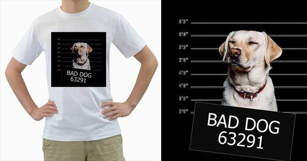 Bad+Dog+Men's+T+Shirt+(white)++Men's+T-Shirt+(White)+