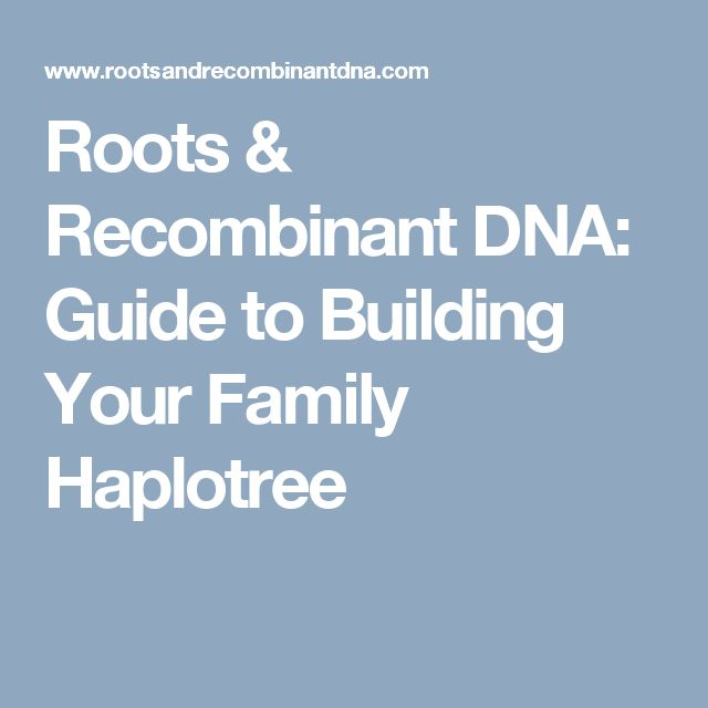 Roots & Recombinant DNA: Guide to Building Your Family Haplotree