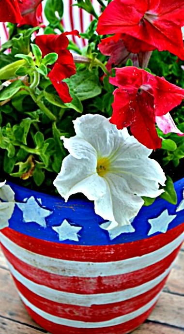 Page Not Found Flower Planters Planters Dollar Stores 400 x 300