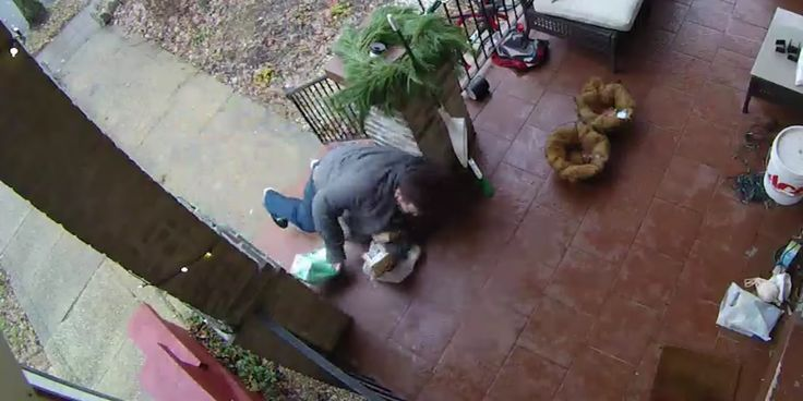Nest just shared a whole bunch of hilarious security cam videos http://www.businessinsider.com/9-funny-home-security-cam-videos-from-nest-2017-3?utm_campaign=crowdfire&utm_content=crowdfire&utm_medium=social&utm_source=pinterest  #lol #fun #funny #life #cams