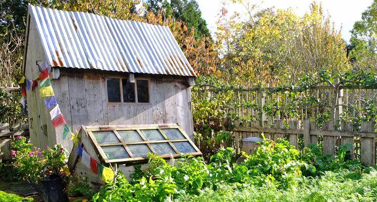 Story Walks – Mr McGregor's Garden