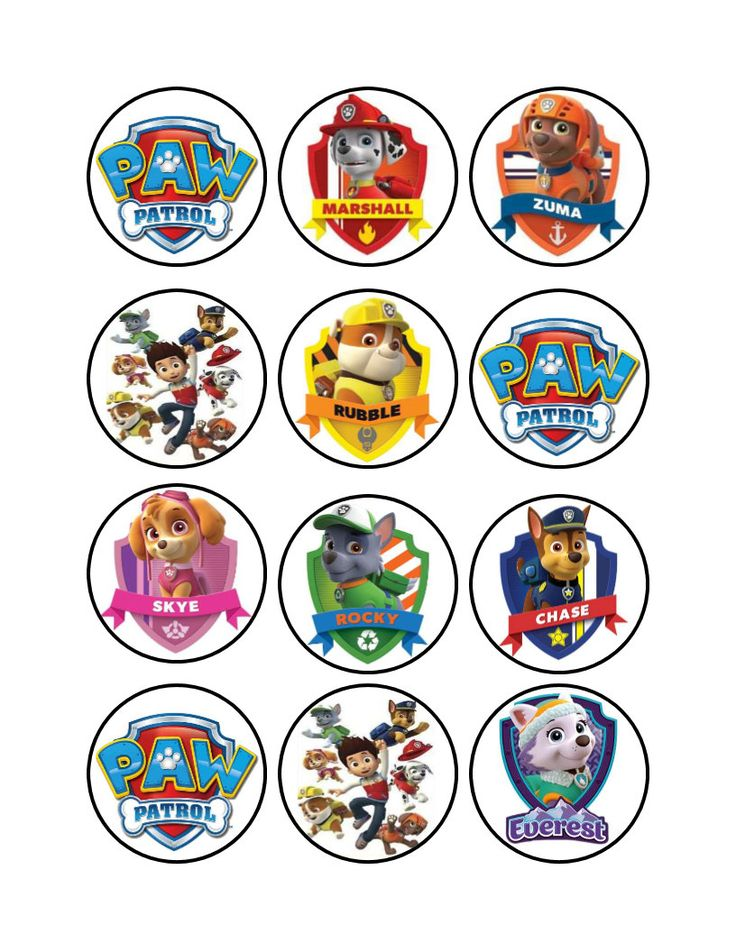 https://www.etsy.com/listing/481109505/edible-paw-patrol-cupcake-toppers?ref=shop_home_active_13