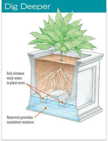 Square Planters - Self Watering Square Planter | Gardeners.com