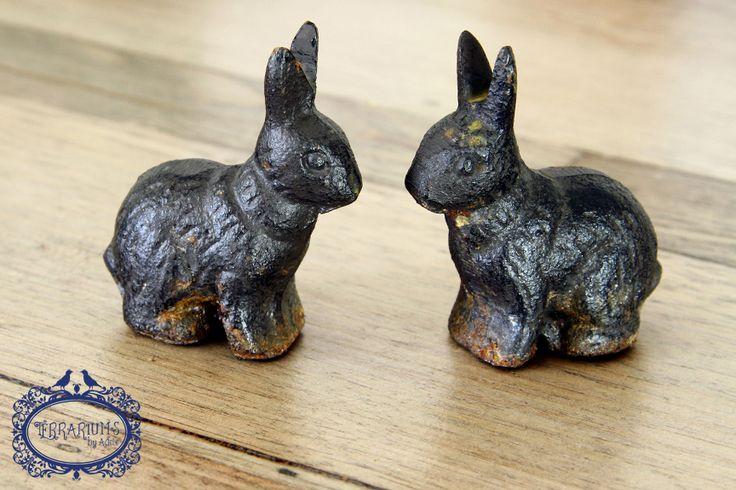 Cast iron rabbits. A great terrarium accessory. Follow us on Facebook.
