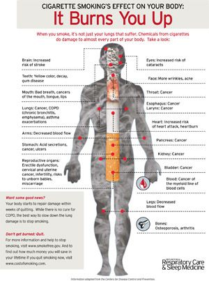 effects on the body from smoking - Google Search