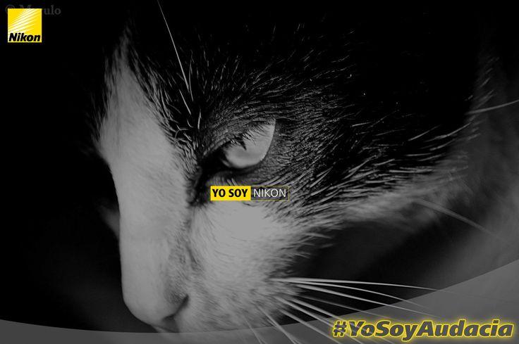 Juan Francisco Marulanda Alvarez #YoSoyAudacia, #YosoyNikon Nikon D3200