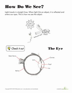 how to learn the parts of the eye