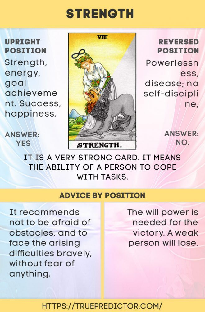 Strength Tarot Card Meaning In Love Money And Future Readings