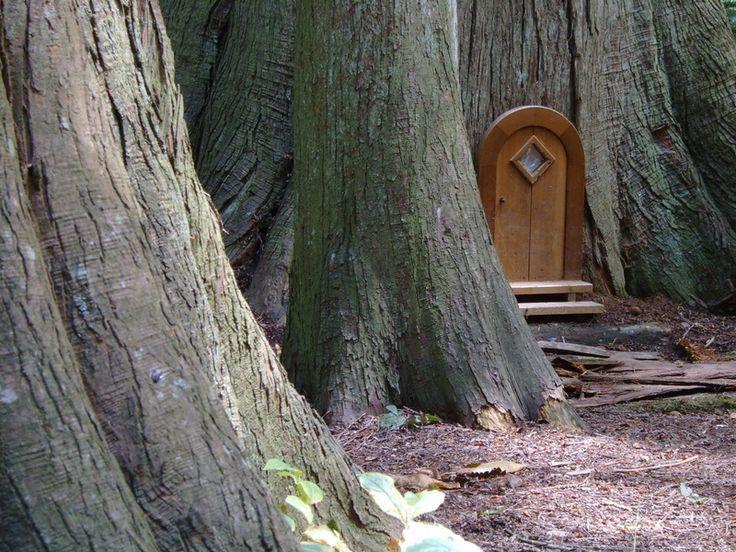 Fairy Doors of Redwood Park in So. Surrey/White Rock BC