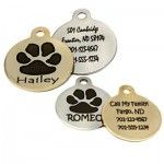 The Importance of Dog Tags - dogIDs #Blog
