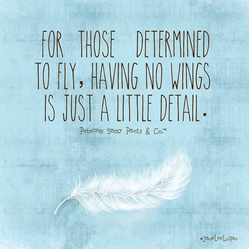 For those determined to fly, having no wings is just a little detail