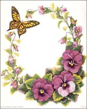 borde flores y mariposa