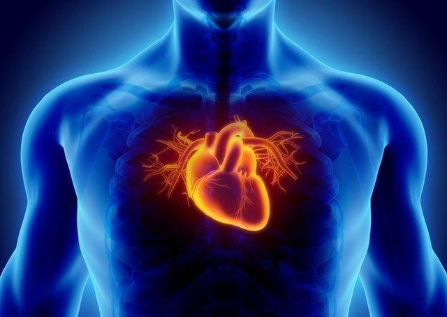 Diseñan un robot blando que ayuda al corazón a latir Se ajusta alrededor de un corazón y lo ayuda a bombear #medical