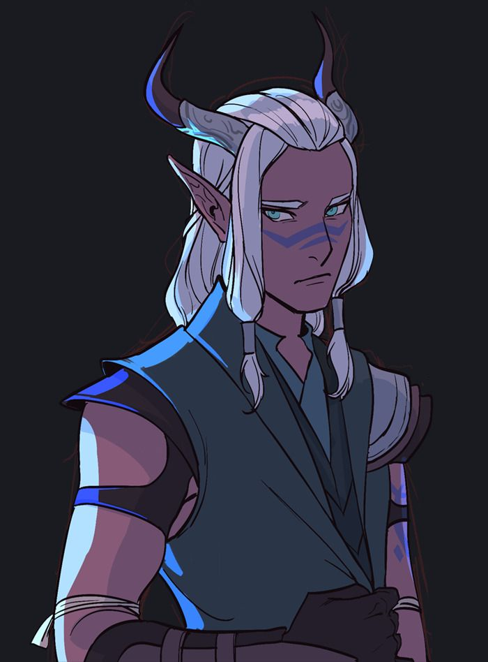 dragon prince tumblr - 700×948