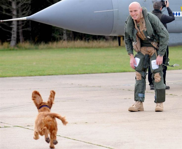 A precious Spaniel pooch named Jezebel welcomed home her owner Steve Morris, a flight lieutenant, after his seven-month deployment in Libya.Morris piloted one of nine Squadron GR4 Tornados that just returned to RAF Marham in Norfolk, England after supporting the rebel forces that overthrew Muammar Gaddafi.Our favorite picture is that shot of little Jezebel's ears standing straight up as she run