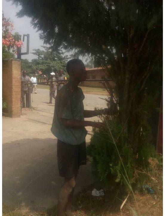Baddest Shock Ever : Thief Loses His Memory In Delta As Electricity Shock Him While Stealing