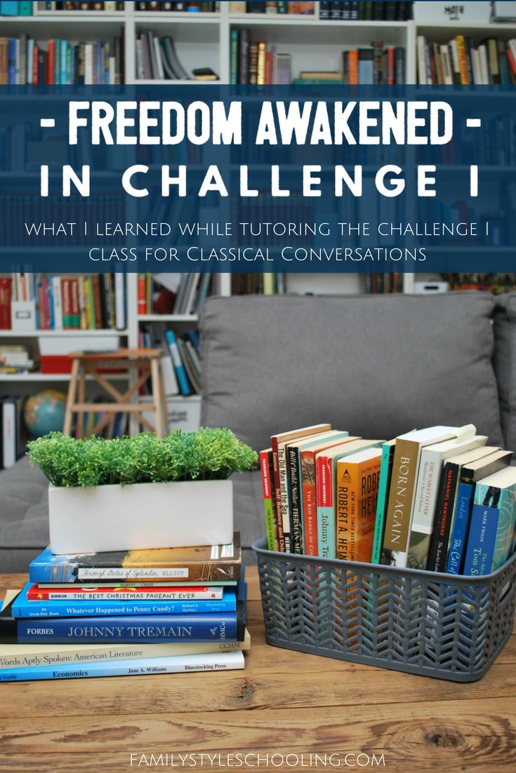 During the 2015-2016 school year, I had the privilege of directing my son's Challenge I class. It was my third year with four of the students, and second with two more. Surprisingly, the class went …