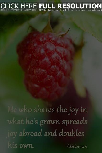 Garden saying