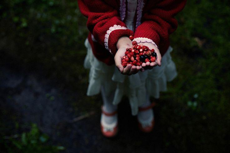Caucasian girl gathering berries - Caucasian girl gathering berries