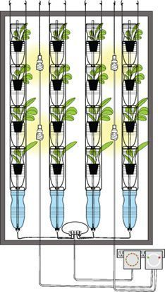 hydroponics window garden using recycled plastic bottles for more than drinking out of!