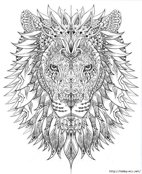 238 best FREE COLORING PAGES  BOOKS images on Pinterest Coloring - fresh coloring pages lion head