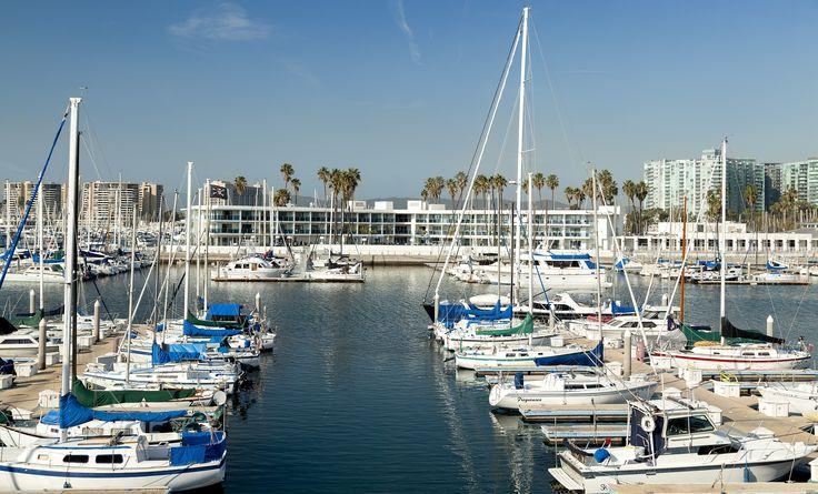 Scenic Marina del Rey views