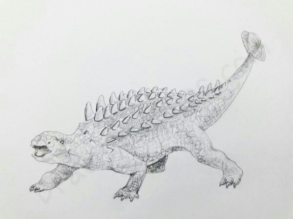 How to Draw An Ankylosaurus: In a Few easy steps with pictures