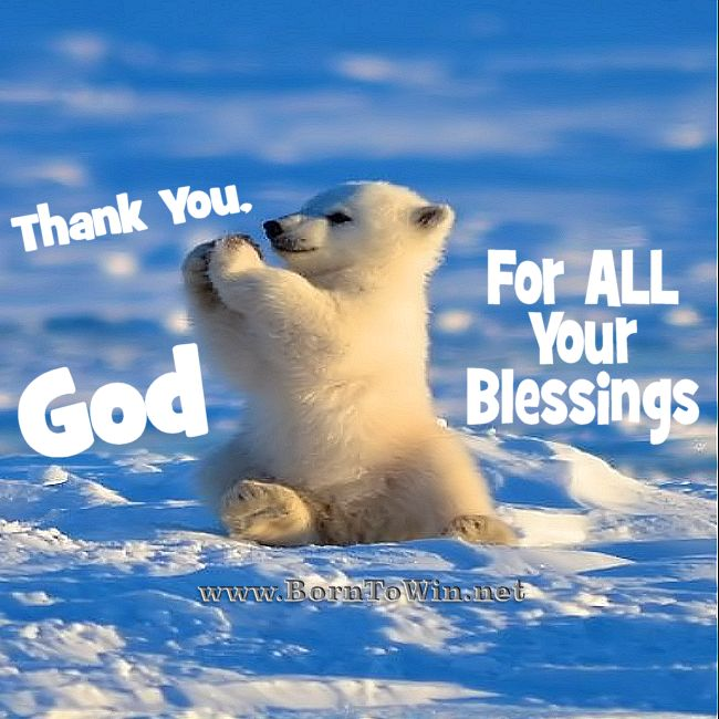 Thank You, God For ALL Your Blessings. Amen http://www.borntowin.net/inspirational-scripture-graphics