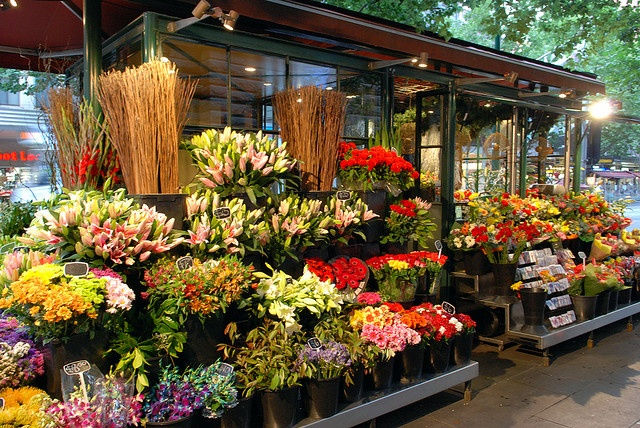 My favourite Flower Shop in Melbourne CBD
