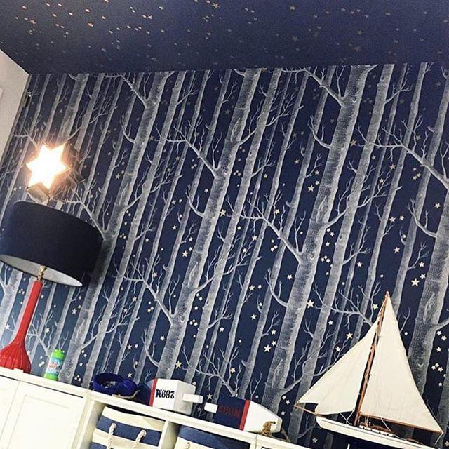 Cole Son Woods Stars Wallpaper Shop Justkidswallpaper
