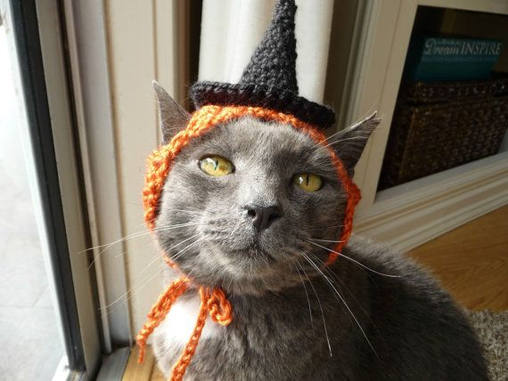 halloween costume for cat witch hat for a cat holiday hat fall orange black funny cat hat knit cat hat crochet cat hat pet clothing present - Scary Cat Halloween Costume