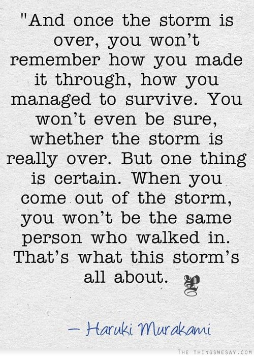 But one thing is certain when you come out of the storm you won't be the same person who walked in that's what this storm's all about