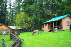 17 Best Images About Cabins On Resort Side Of Wallowa Lake