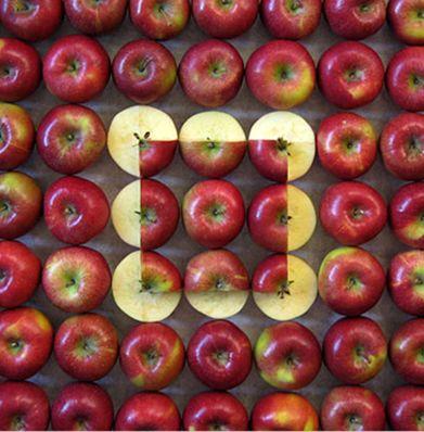 Kunstenaar: Sakir Gökçebag  http://www.artecomagazine.nl/artecomagazine_food_art_sakir_gokcebag.html