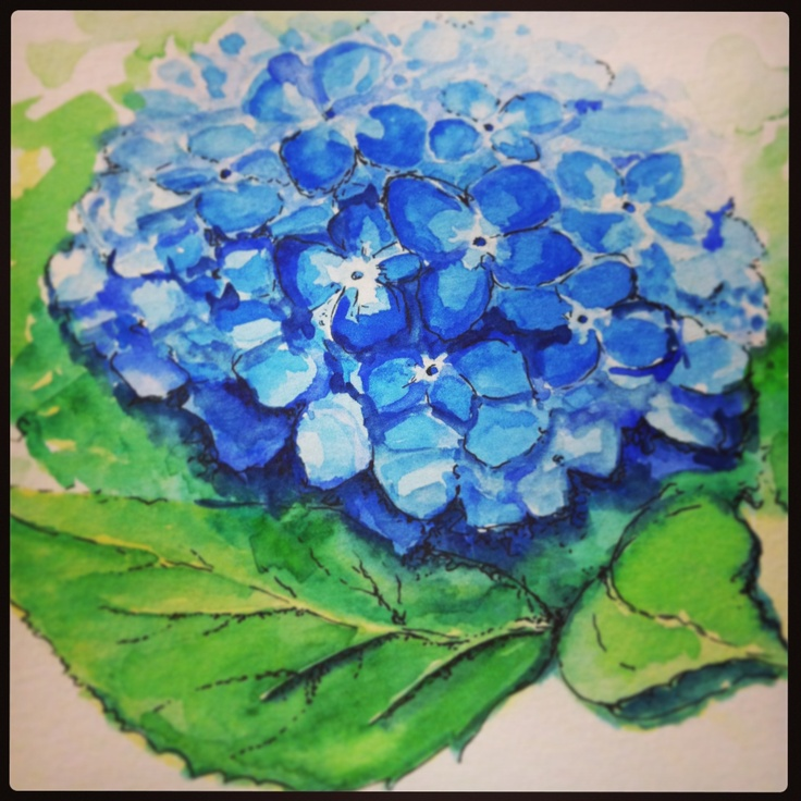 #hydrangea #flowers #floralart #watercolours #art #sketching #crafty #painting #blue #artistic #drawing #artwork