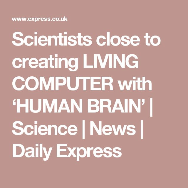Scientists close to creating LIVING COMPUTER with 'HUMAN BRAIN' | Science | News | Daily Express