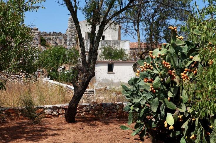 Trifilianika House Garden