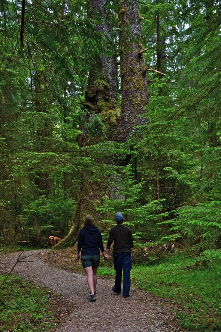 10 Incredible Ways You Need to Experience Haida Gwaii